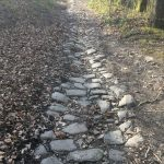 COVID thoughts: An old road near my house